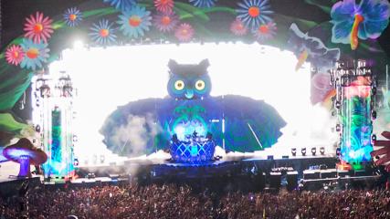 EDCVegas Owl2